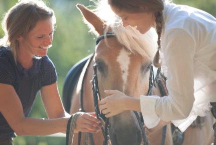 rider_horse_training